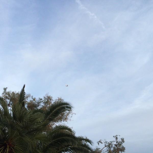 BA289 coming into Phoenix Sky Harbor.