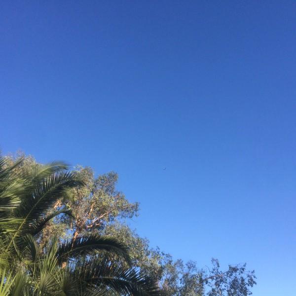 BA289 in clear skies over Arizona - ba289.com